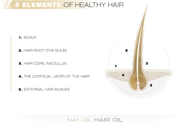 5 elements of healthy hair